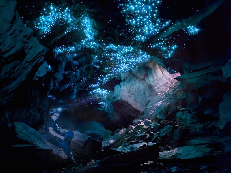 Waitomo - New Zealand - Glowworm Caves